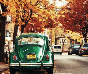 car, autumn, and green image