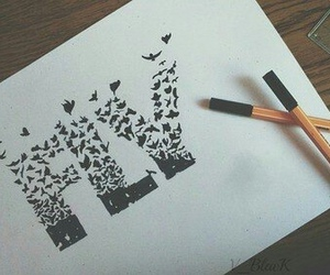 fly, drawing, and art image