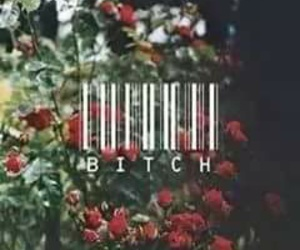 bitch, flowers, and rose image