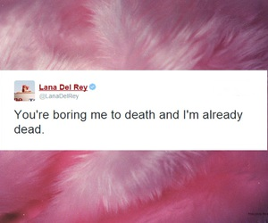quote and lana del rey image