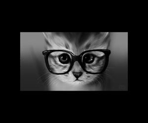 black and white and kitty image