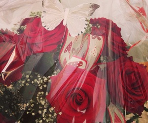 blume, rose, and rot image