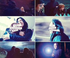 always, lily, and potter image