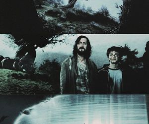 book, expecto patronum, and harry potter image