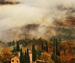 italy, nature, and autumn image