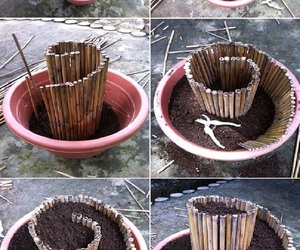 diy, ideas, and plants image
