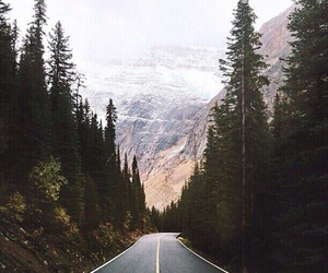 forest, mountains, and road image
