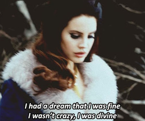 lana del rey, crazy, and Dream image
