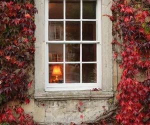 autumn, house, and leafs image