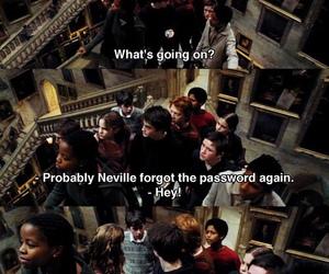 harry potter, gryffindor, and neville image