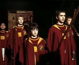 harry potter, quidditch, and gryffindor image