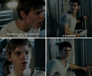 newt, thomas, and quotes image