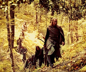 forest, LOTR, and elves image