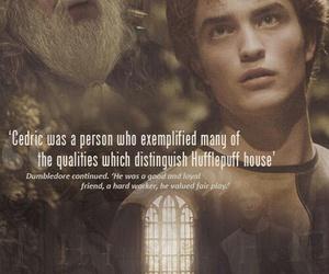 harry potter, dumbledore, and hufflepuff image