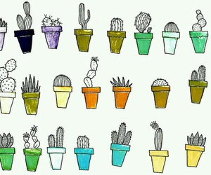 cactus, plants, and cool image