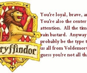 harry potter and gryffindor image