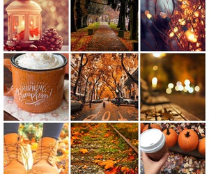 autumn, Collage, and fall image