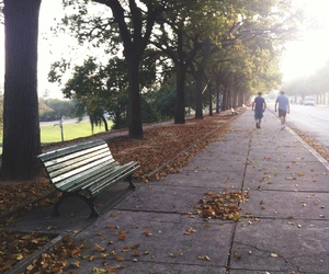autumn, inspiring, and hipster image