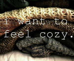 cozy, autumn, and sweater image