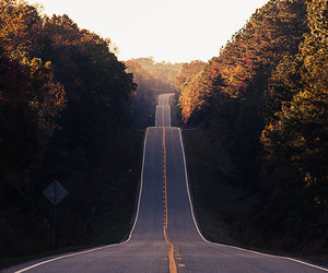 roads and nature image