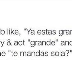 funny, latinos, and growinguphispanic image