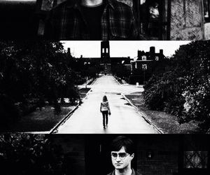black and white, daniel radcliffe, and edit image