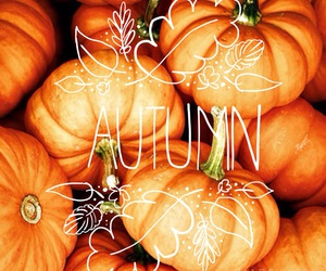 fontcandy, autumn, and fall image
