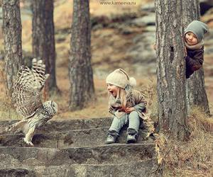 owl, animal, and baby image