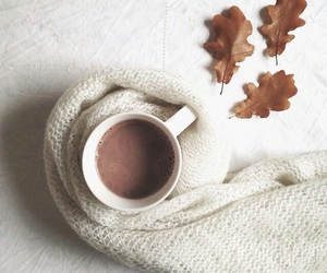autumn, coffee, and sweater image
