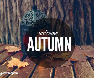 accessories, autumn, and october image