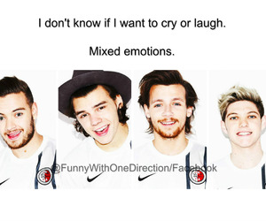 funny, mix, and liam payne image