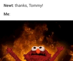 newtmas, funny, and newt image