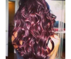 beauty, burgundy, and curls image