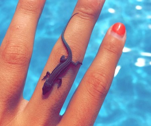 gel, nails, and swimming image