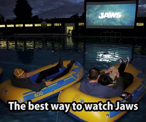 boat, funny, and jaws image
