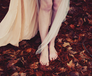 black and white, legs, and leaves image