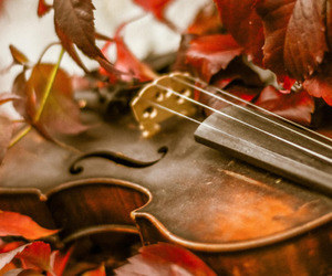 autumn, fall, and music image