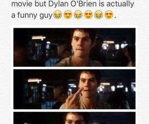 funny, the scorch trials, and the maze runner image