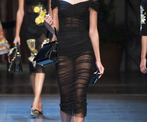 taylor hill, Dolce & Gabbana, and model image
