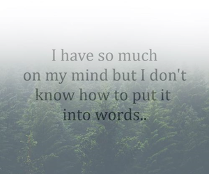 mind, life, and words image