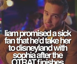 facts, 1d, and liam payne image