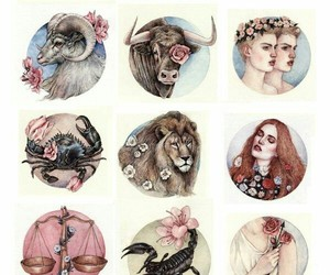 zodiac, art, and cancer image