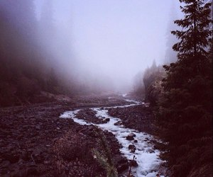 beautiful, dreamy, and foggy image