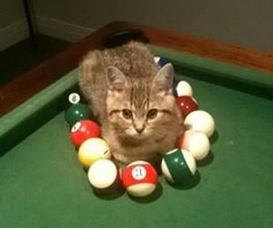 balls, billiard, and image image