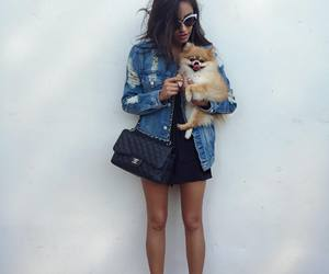 shay mitchell, dog, and pretty little liars image