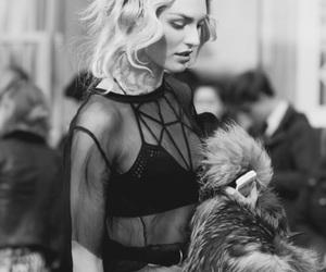 fashion, model, and candice swanepoel image