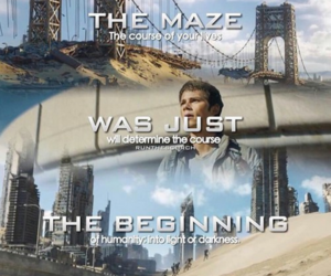 the scorch trials, dylan o'brien, and thomas image