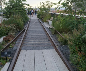green, high line, and line image