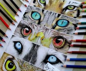 animal, eyes, and art image