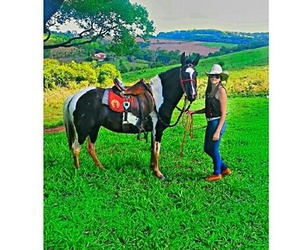 boots, Cowgirl, and horse image